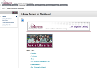 Image of the Library page in Blackboard